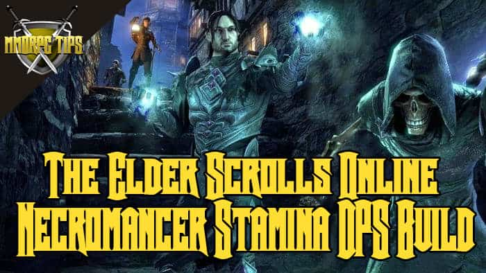 necromancer stamina dps build for pve in eso